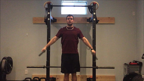 Lateral Raises - Plate