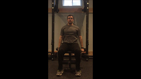 Front Raises - Seated DB