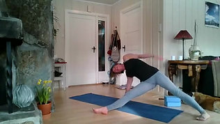 Yogic Arts - Power Yoga