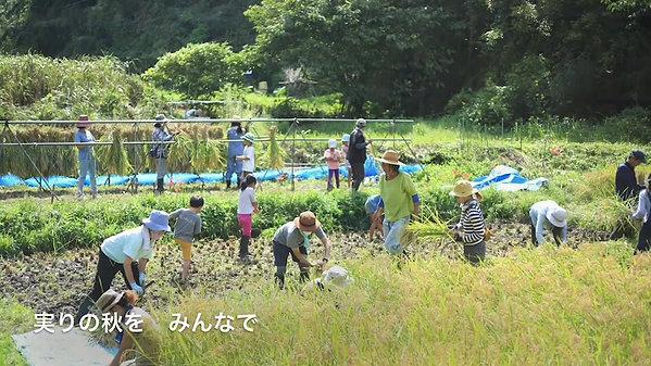 青空自主保育・でんでんむし/ Dendenmushi-Kamakura