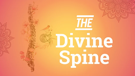 The Divine Spine ~ for focus & vitality