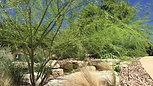 JXC Landscaping Rockin' Rough Hollow (1)