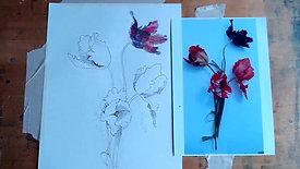 Drawing Cafe Tulipomania