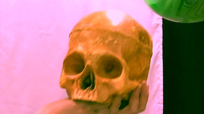 Hamlet: The Clown Prince of Denmark