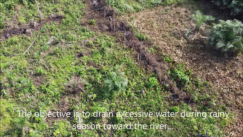 SCIM Farm Drainage Canal