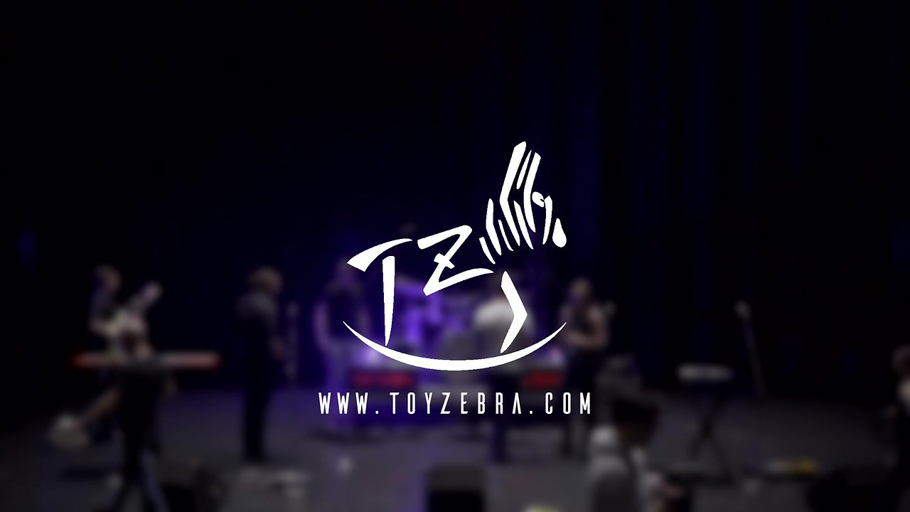 Toy Zebra Promo Video