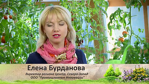 Soveti_i_sekreti_4_azotovit