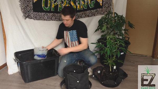 Transplanting W: EZ Swap Pots