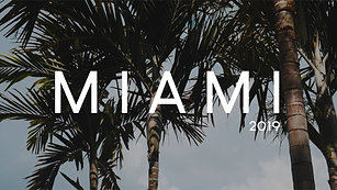 | The Miami Experience |