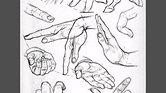 Epaules, bras, nuque et mains