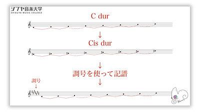 (12)楽典 初級 -楽譜が読めるようになる-