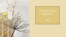 #9 WOENSDAG WOONTIP