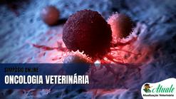 Dra Sabrina Rodhigeri - Palestra Oncologia