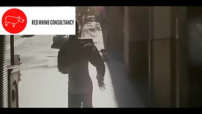 Red Rhino Consultancy Advert