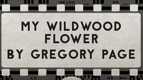 My Wildwood Flower
