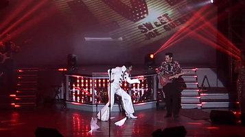 Dean Z - The Ultimate Elvis - Tiger Man