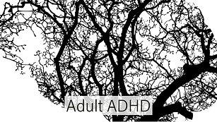 Adult ADHD #1