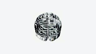 Neurobiology of fear: 1