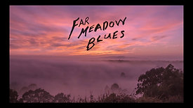 """FAR MEADOW BLUES"" DOS // ENOS"