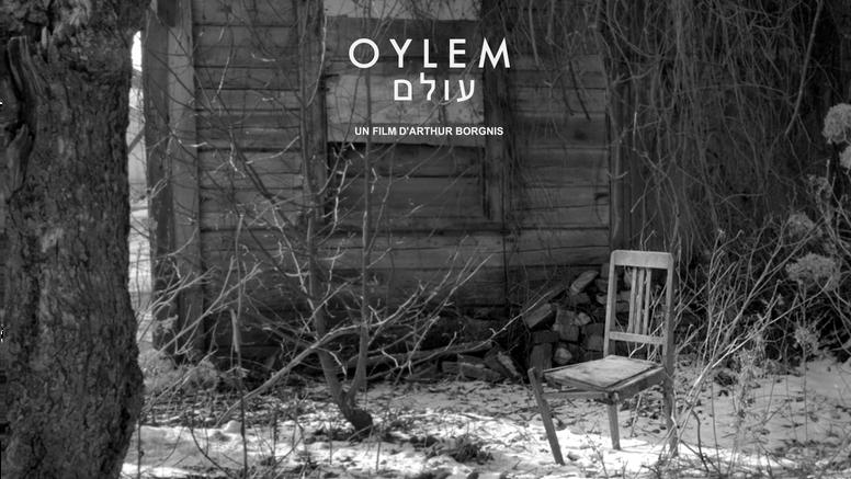 OYLEM VF
