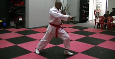 Forms- Wansu (Black Belt Club, All Belts)