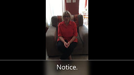 Tips - Seen and Heard
