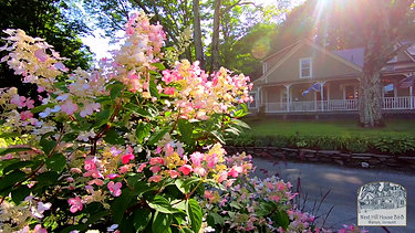 West Hill Bed and Breakfast