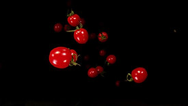 Falling cherry tomatoes on black background