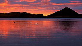 Iceland landscape - sunset with lake