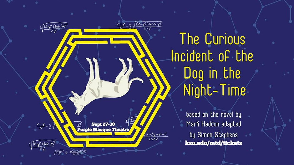 Interview: The Curious Incident of the Dog in the Night Time