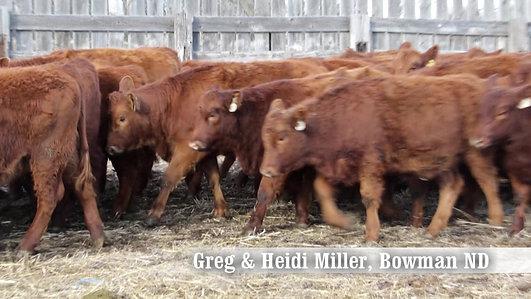 Greg & Heidi Miller