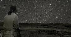 Adios Amor - Stars