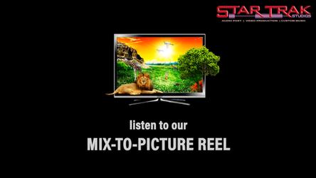 2020 TV Soundtrack Reel