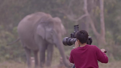 #bts Into the Wild - India