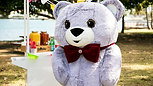 TRC Teddy Bear's Picnic