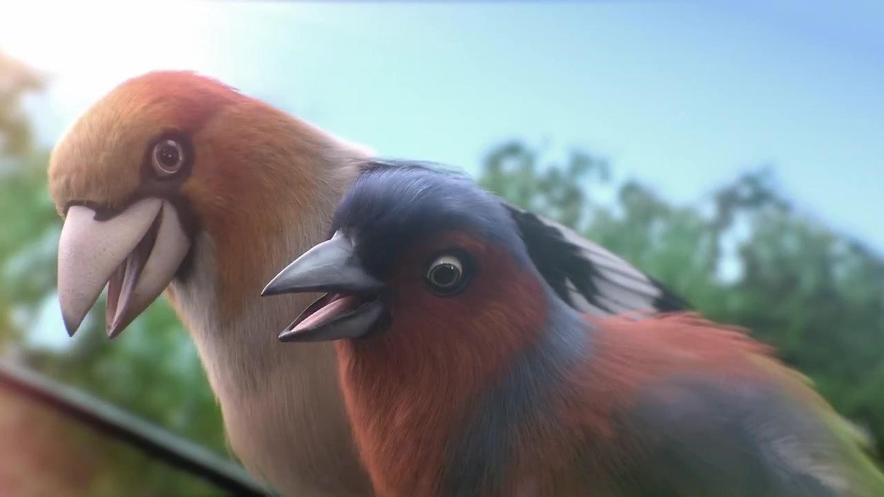Karcher - Pájaros