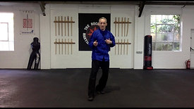 Lesson 1 - Fighting Stance