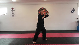Tai Chi - Grasp Sparrows Tail Sequence