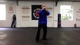 Lesson 5 - The Straight Punch