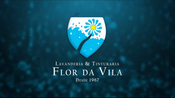 Lavanderia & Tinturaria Commercial Ad