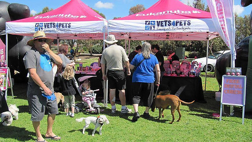 Dogs Day Out Mawson Lakes
