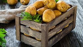 Kartoffeln - Qualität & Frische