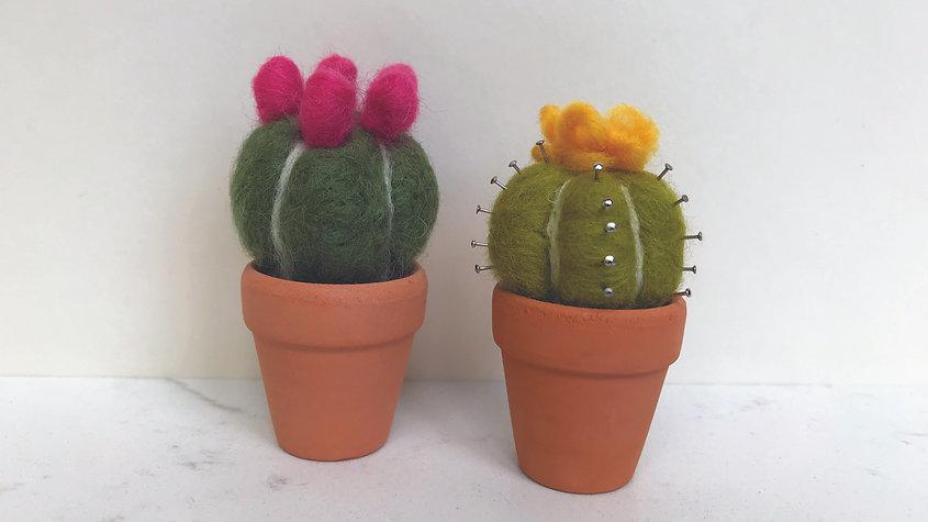 Needle-Felted Cactus