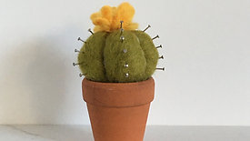 Needle-Felted Cacti - Episode 1