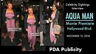 Aquaman Movie Premiere & Interview