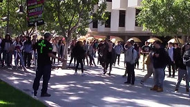 MASSIVE Mob of Students Surround Street Preacher!