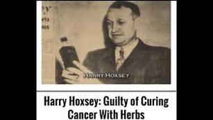 Dr. Hoxsey / Testimony