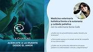 Medicina veterinaria holística frente a la eutanasia y cuidado paliativo con la veterinaria Sonia Calle
