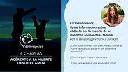 Ciclo renovador, tips e información sobre el duelo por la muerte de un miembro animal de la familia con la tanatóloga Verónica Alcocer