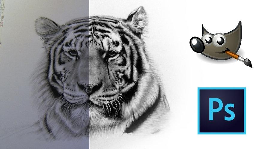 Digitale Nachbearbeitung mit Photoshop & Co